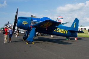 Beautiful Bearcat in Blue Angels colours